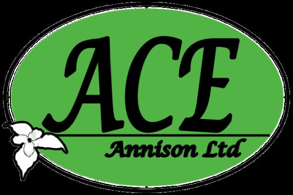 AceAnnison Ltd.